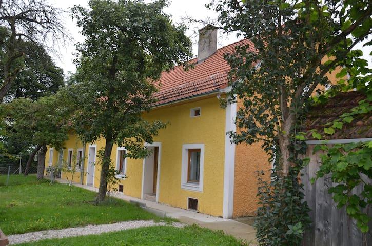 Landhaus zentral + familienfreundl. - Thalheim bei Wels - House
