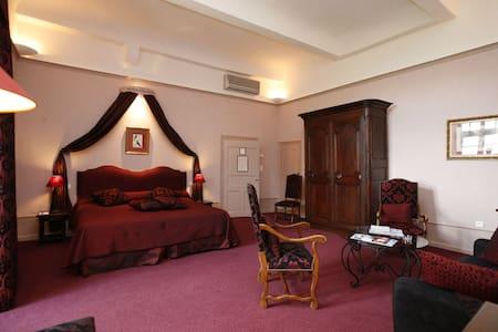 Chambre Prestige dans le Château de Colette - Varetz - Slott