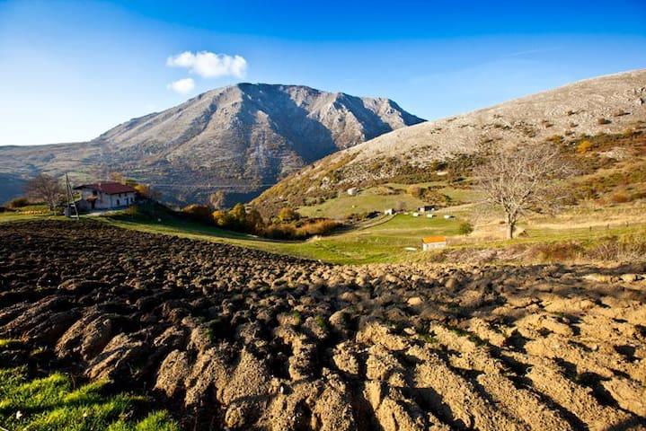 """CASA VACANZE """"TERRESANE"""" - Monte San Giacomo - Chalupa"""