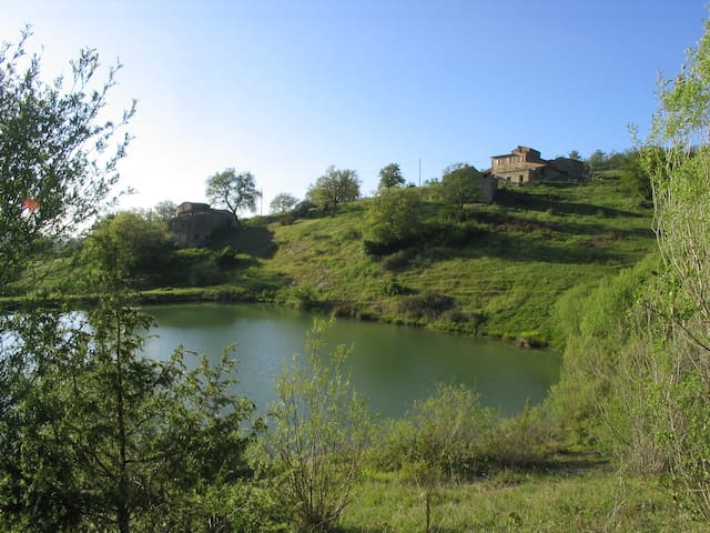 Tuscan Chianti Holiday Fonte with private lake. - Radda In Chianti - อพาร์ทเมนท์