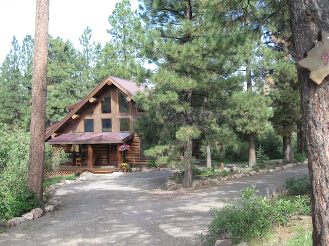 3 acres of pines on ridge-top with circle drive
