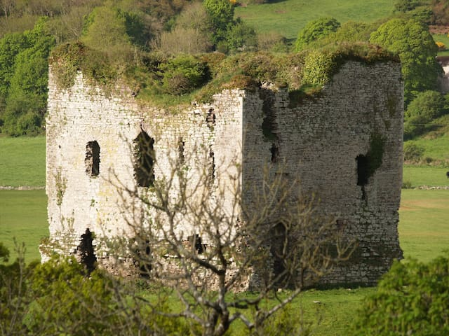 Grennan Castle in Thomastown