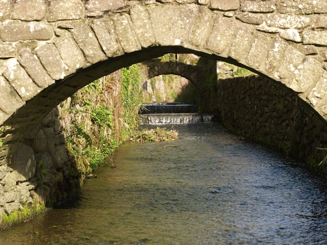 Stream in Inistioge  5 miles away, an enchanting village well worth a visit for a day or more.