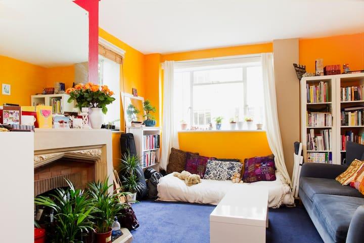 Sunny 1 bedroom flat in clapham - London - Apartment