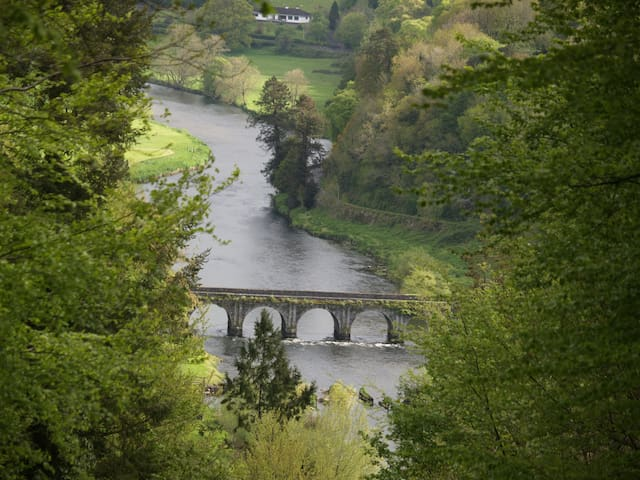 View of Bridge over the River Nore in Inistioge from Woodstock