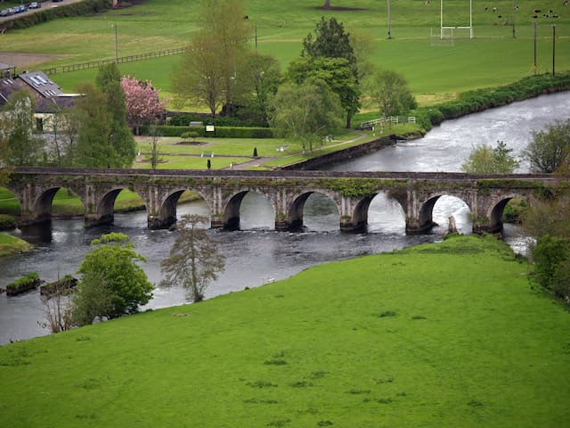 View of River Nore and Bridge at Inistioge from Stanford