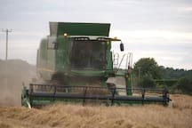 View in field across the road from the apartment as farmer saves the grain harvest of barley, taken on 20th. Aug. 2014