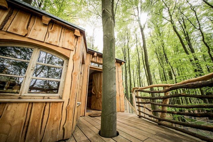 Kork Baumhaus mit Terrasse - Witzenhausen - Treehouse