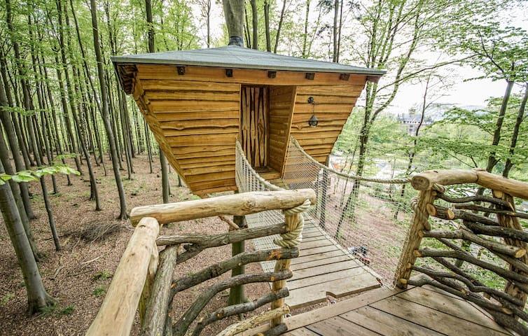 Stamm Baumhaus - Eins sein mit dem Baum. - Witzenhausen - Treehouse