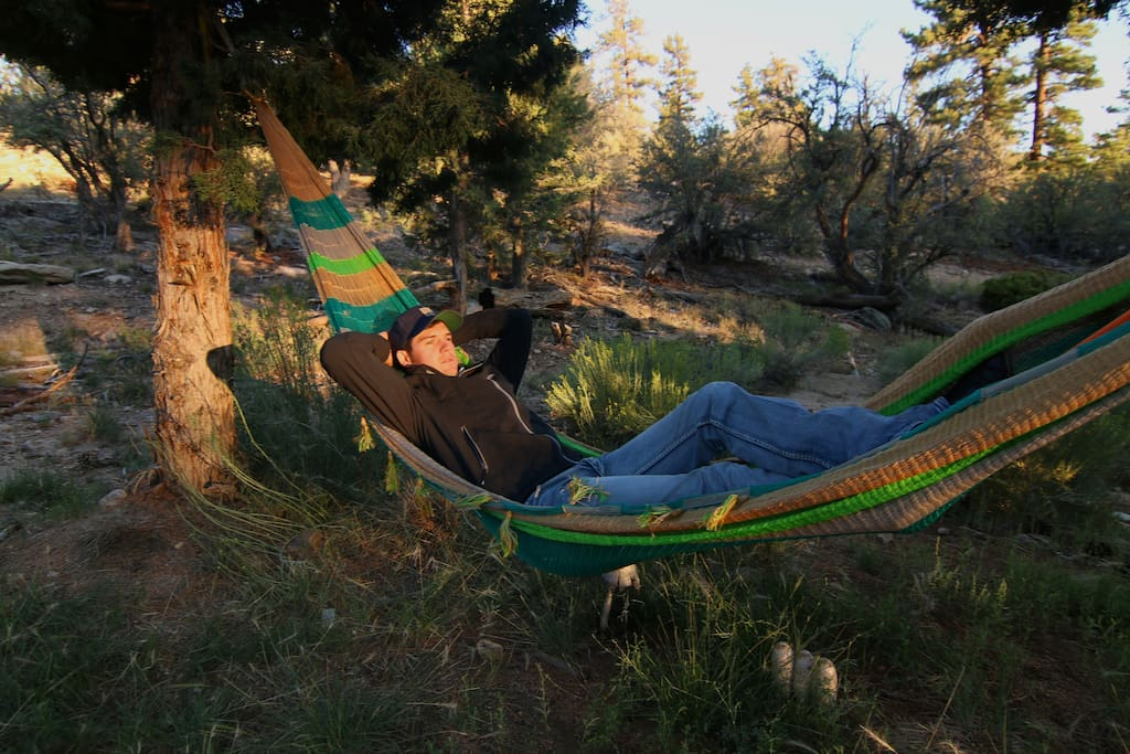 ….or take a nap in the double person hammock under the trees.
