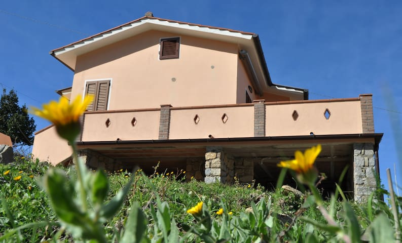 Apartment Il Colle ( 4 )