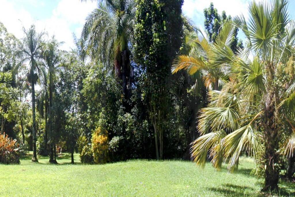Hana Gardenland 5 acre botanical gardens