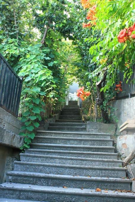 Stairway to Summer Set