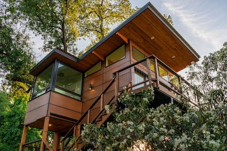 Luxury treehouse with views of the Sierras