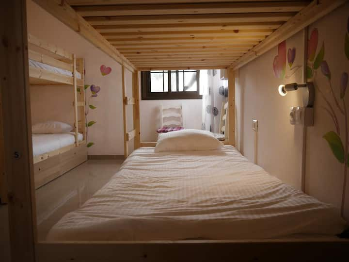 Drago nest hostel - Bed in 6 Mixt