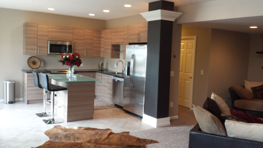 "Contemporary lower level with 70"" flat screen - Prior Lake - House"