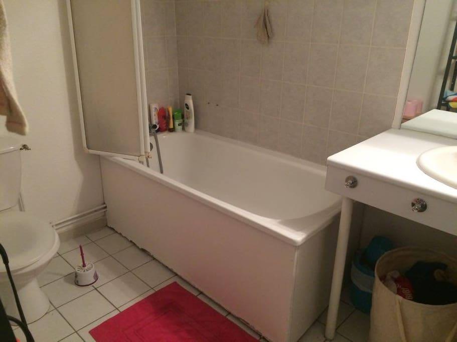 Salle de bain avec toilettes, évier, sèche cheveux...