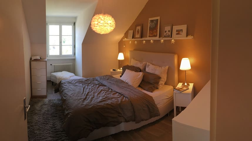Cosy, lovely and peaceful flat in Geneva - Carouge - Appartement