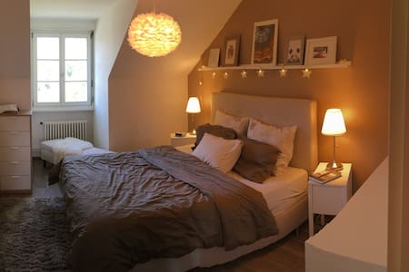 Cosy, lovely and peaceful flat in Geneva - Carouge - Wohnung