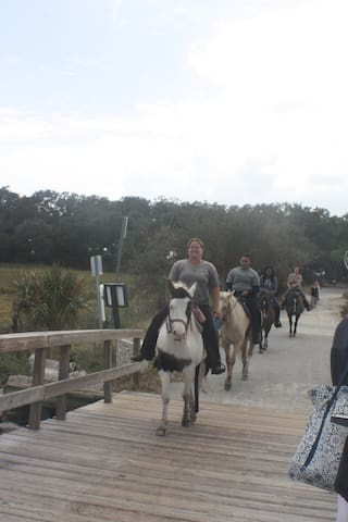 Horseback riding on the beach is available on Jekyll.