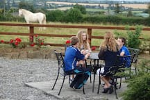This is the picnic area at the rear and a horse will sometimes pay attention to guests dining.