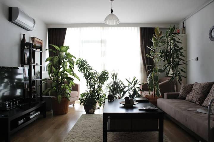 2 Rooms Fully Furnished for Expats