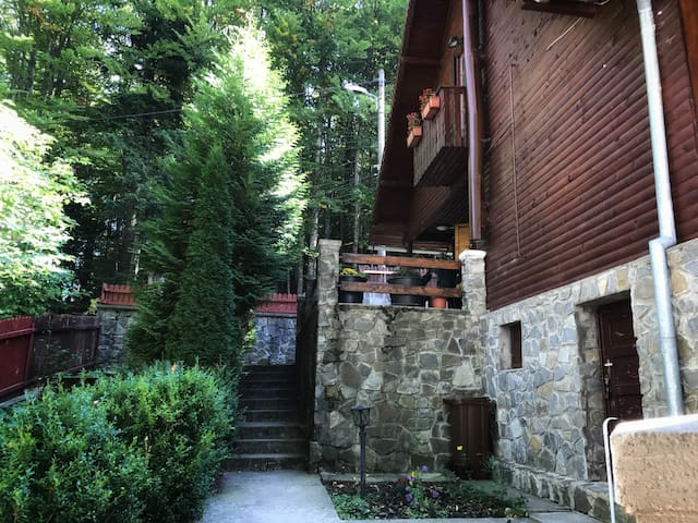 5BR Chalet Newly Renovated with Garden 🌲