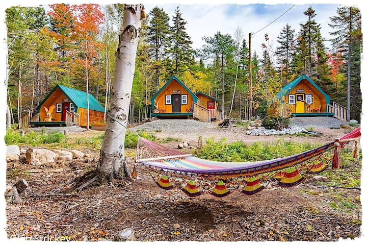 A nice look at the cabins from the outside in the fall season. Even the hammock changed colours