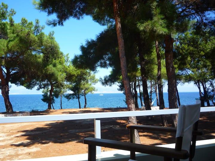 Villa at the sea