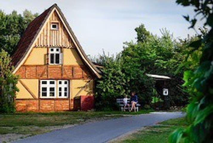 ruhige Ferienwohnung Ostsee Lehmofen Darss Garten
