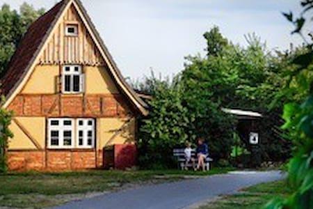ruhige Ferienwohnung Ostsee Lehmofen Darss Garten - Fuhlendorf