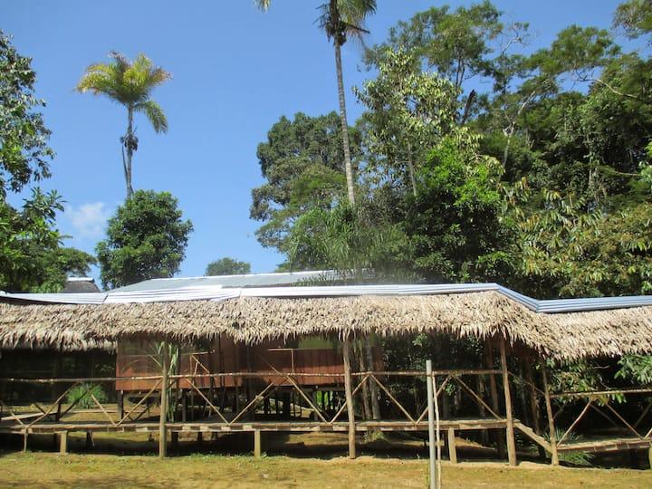 Explorer lodge y tours ecológicos amazónicos,