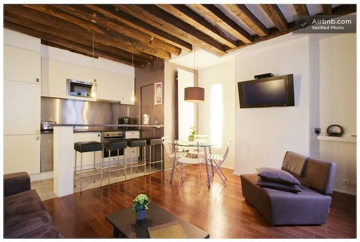 Magnificent apartment in Marais Beaubourg