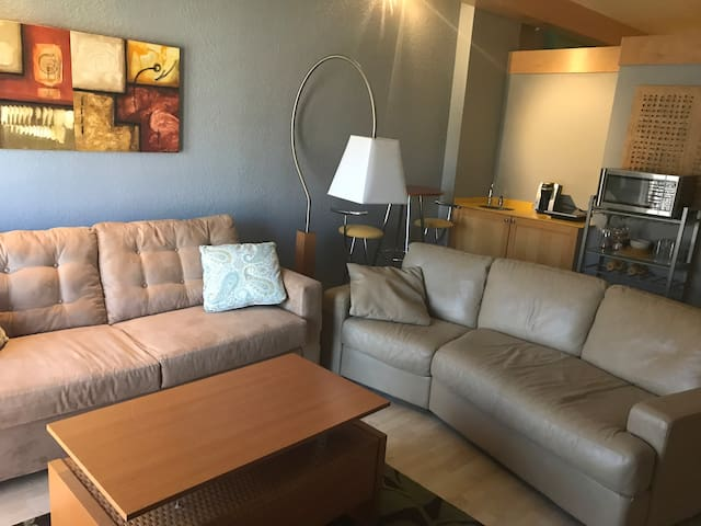 Beautiful European Village Condo B - Palm Coast - Wohnung