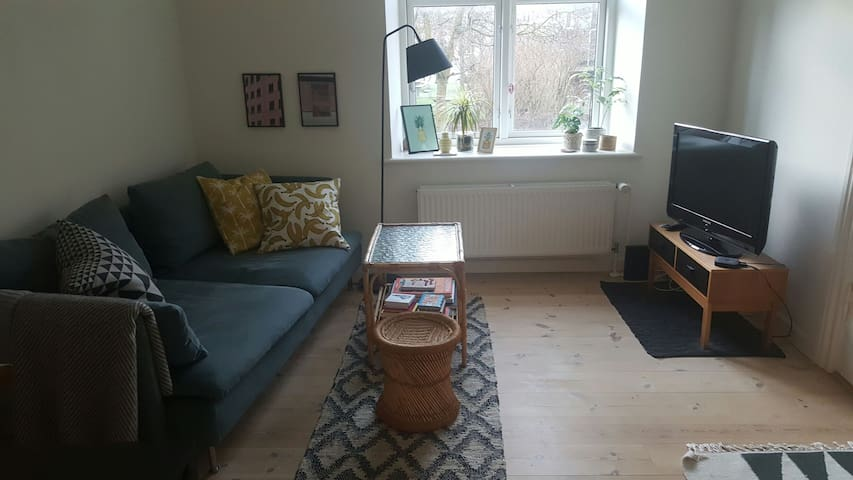 Apartment 400 m. from the station. - Aarhus - Leilighet