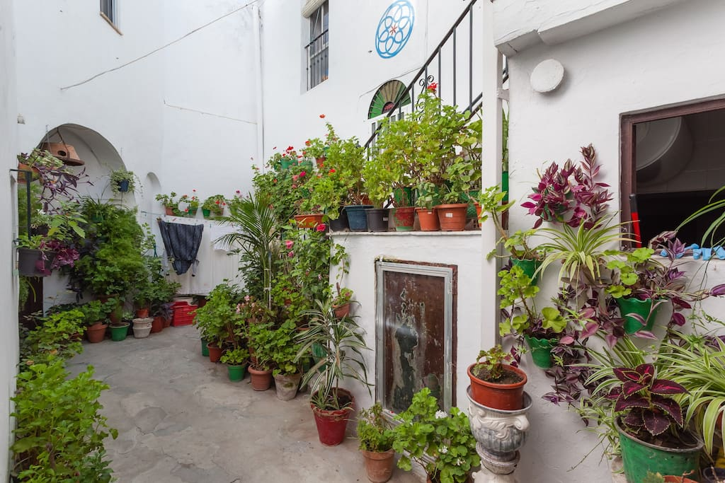 maison andalouse avec de belles vue maisons louer vejer de la frontera andalousie espagne. Black Bedroom Furniture Sets. Home Design Ideas