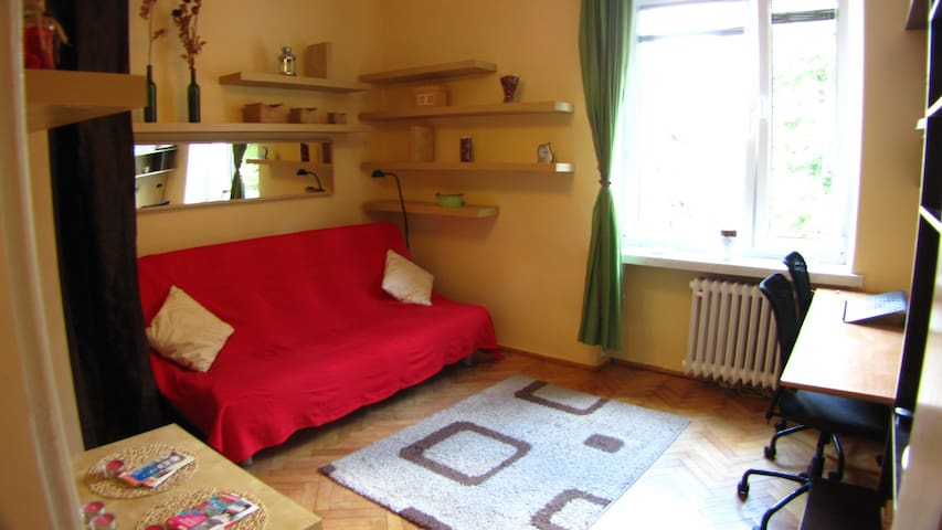 Cozy whole condo, 10-20min.OldTown, good WiFi