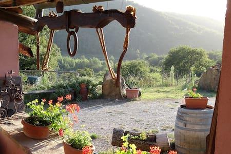 Chianti Farmhouse Tuscany Torre - Radda in Chianti