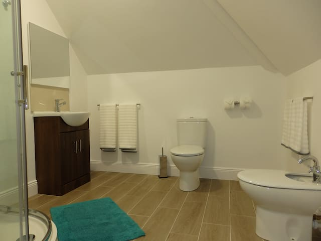 Well fitted bathroom with Roca sink, unit, WC and bidet.