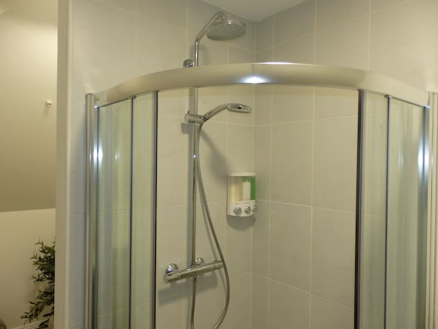 Power shower with two outlets.