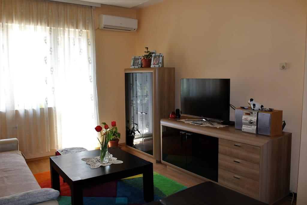 Large living room for afternoon rest