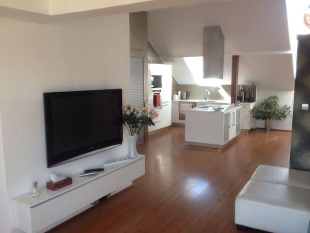 Dvoupodlažní apartmán v centru - Karlovy Vary - Flat