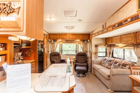 Little Nest- Posh RV in the Woods - San Marcos