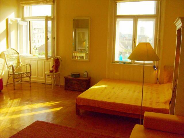 Old town!Sunny!Beautiful flat&view over rooftops! - Budapest - Apartmen