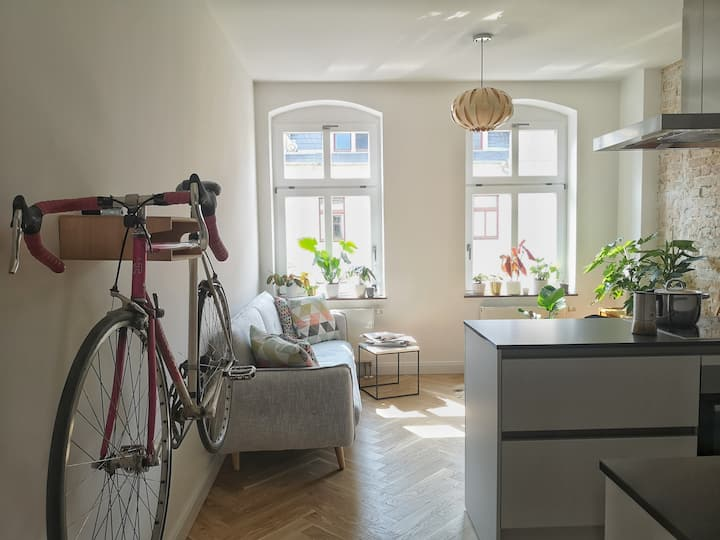 Recently renovated apartment next to the Elbe