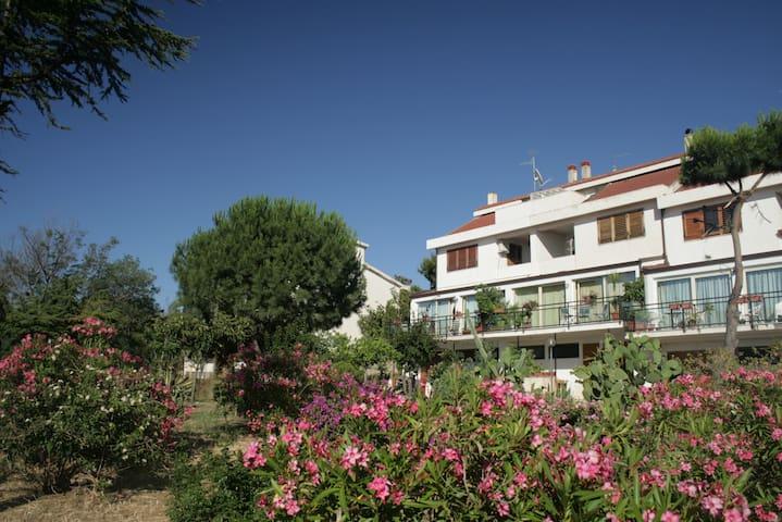 Vista stupenda sullo Stretto  - Reggio Calabria - Casa