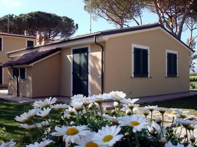 Appartamento campagna a 2 km mare - Piombino - Apartment