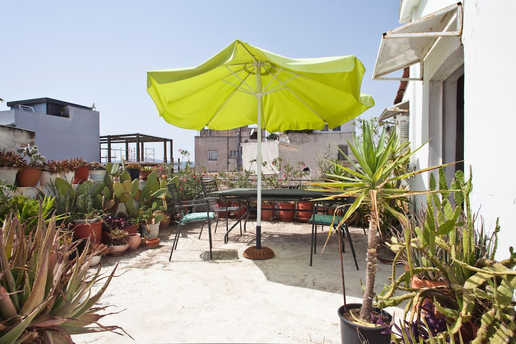 Cosy terrace with outdoors furniture and local plants