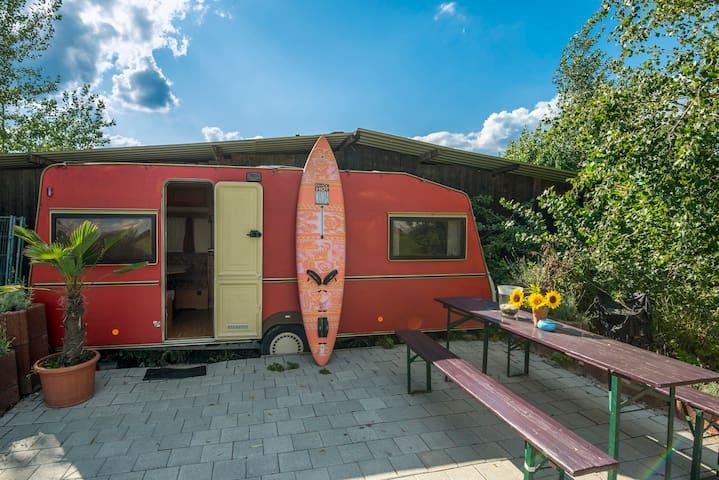 Wohnwagen am See  - Biblis - Camper