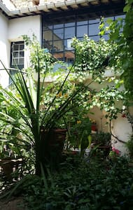 Maison de charme 4 à 10 personnes Prix imbattable - Aigues-Vives